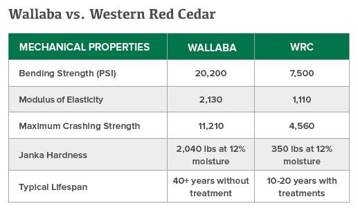 Wallaba vs Cedar.jpg