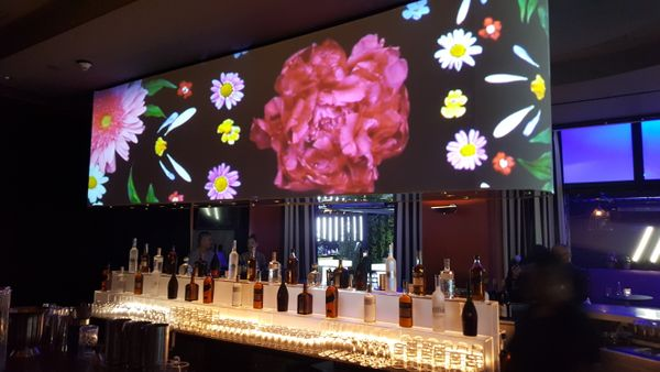 video mapping behind bar