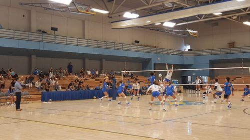 UCLA Women's Volleyball Game