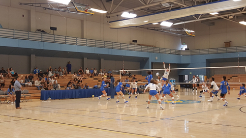 UCLA Volleyball Los Angeles