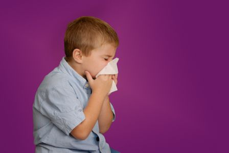 Common Triggers Of Allergies