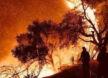 fire california.jpg