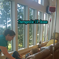 intravenous ozone therapy