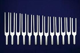 Forks sc.jpeg