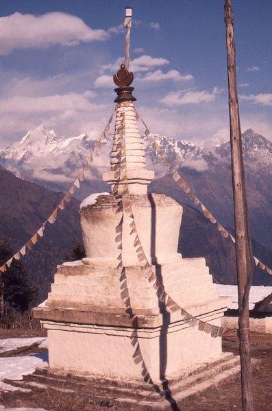 stupascan 2.jpeg