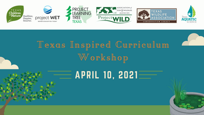 Texas Inspired Curriculum (3).png