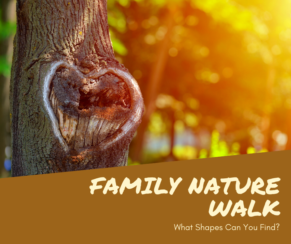 Family Nature Walk_ shapes.png