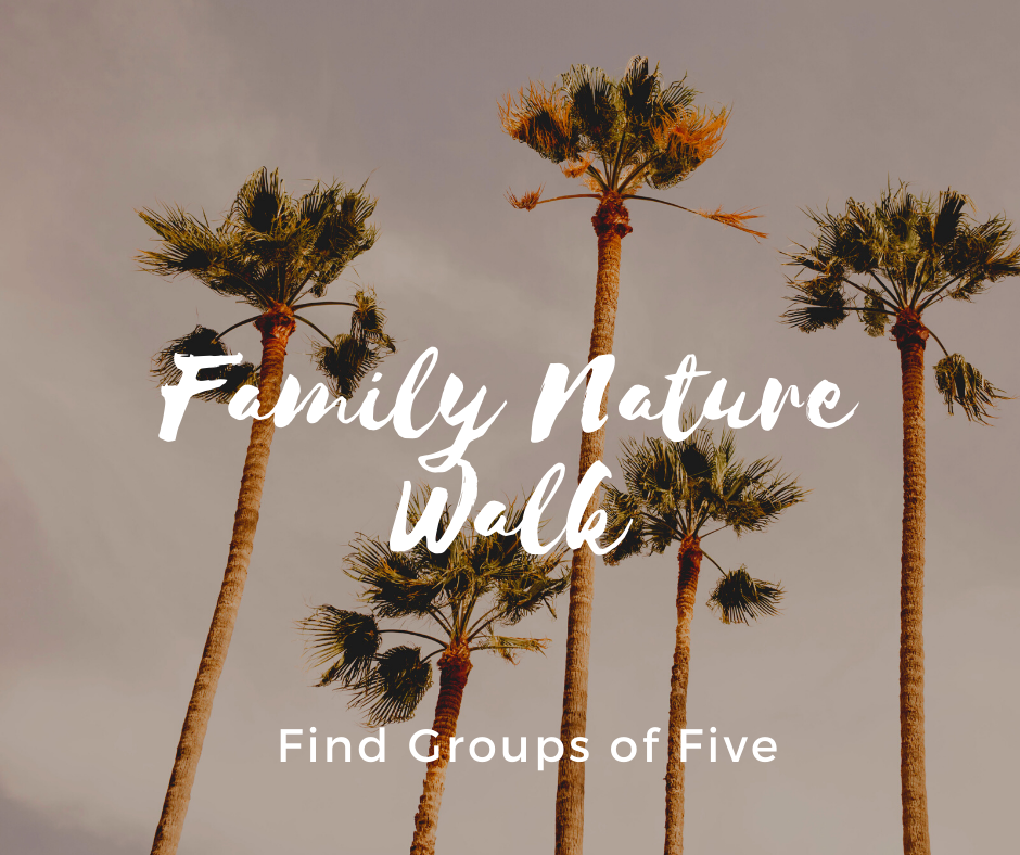 Family Nature Walk_ Five.png