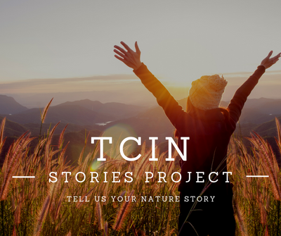 TCiN Stories Project.png