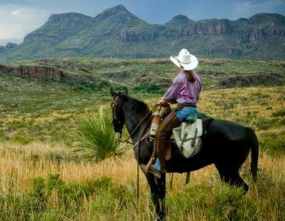 cowgirl2-500.jpg