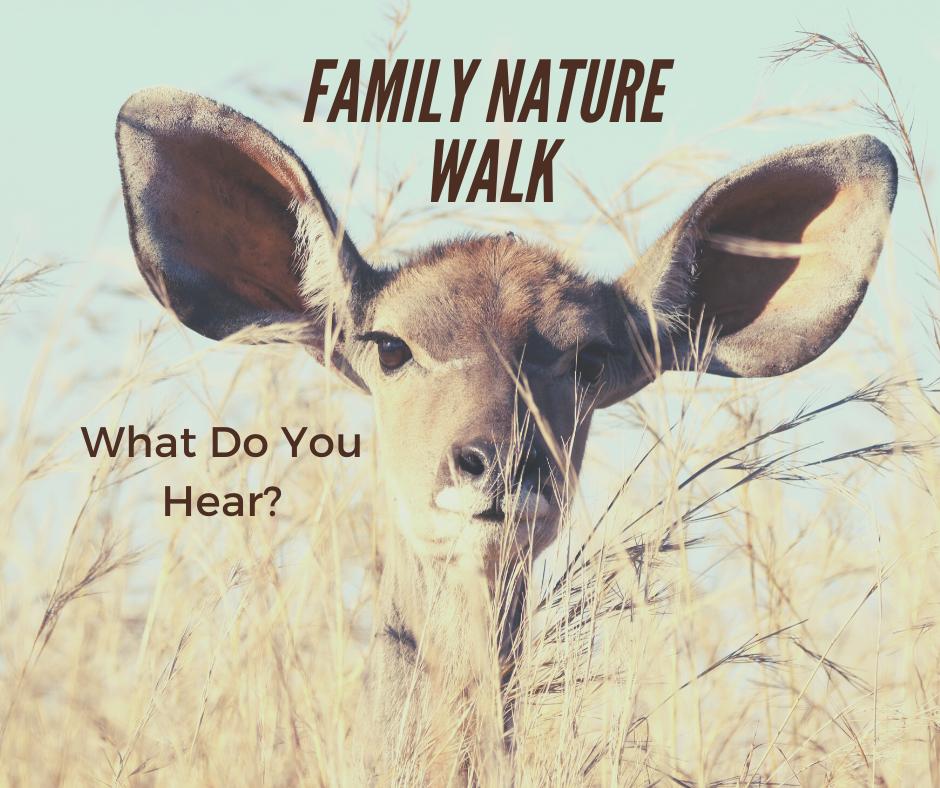 Family Nature Walk_ Listen.png