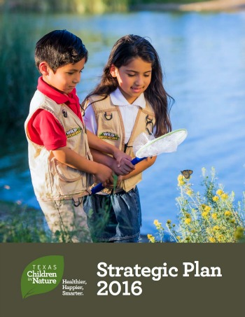 TCiN strategic plan 350.jpg