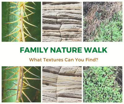 Family Nature Walk_ Texture.png