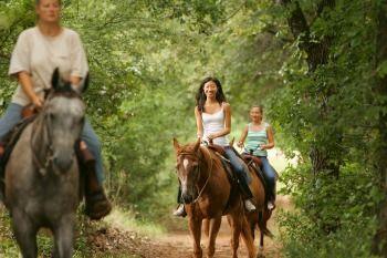 Horse trail 350.jpg