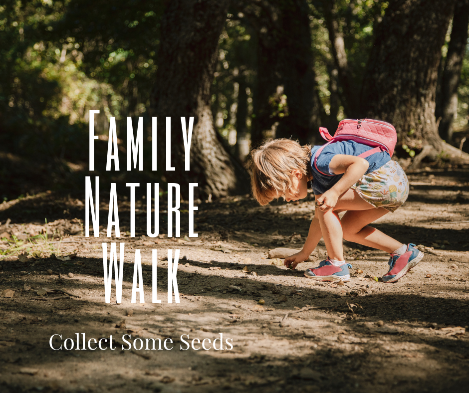 Family Nature Walk_ collect seeds.png