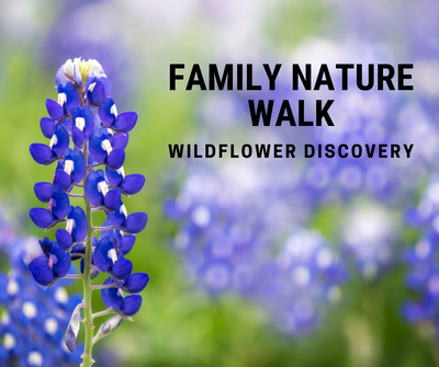 Family Nature Walk_ Wildflowers.png