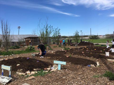 kids planting.jpg