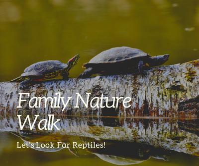 Family Nature Walk_ Reptiles.png