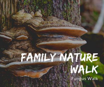 Family Nature Walk Fungus.png