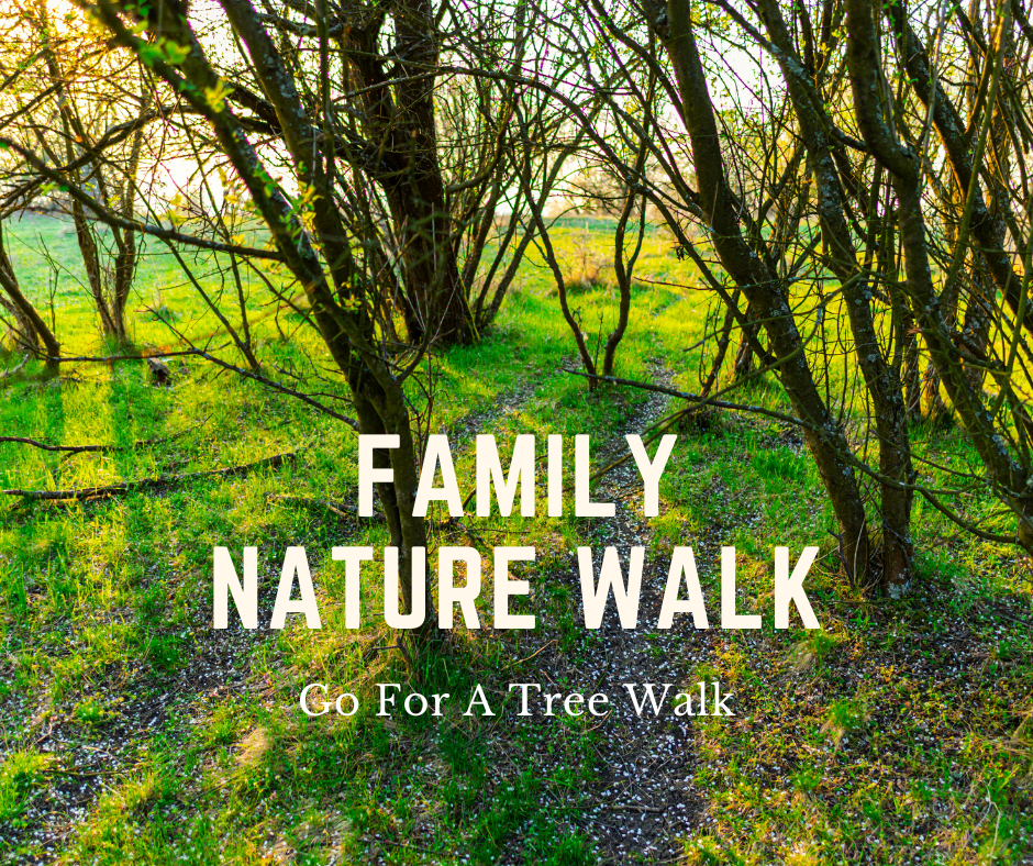 Family Nature Walk_ Trees.png