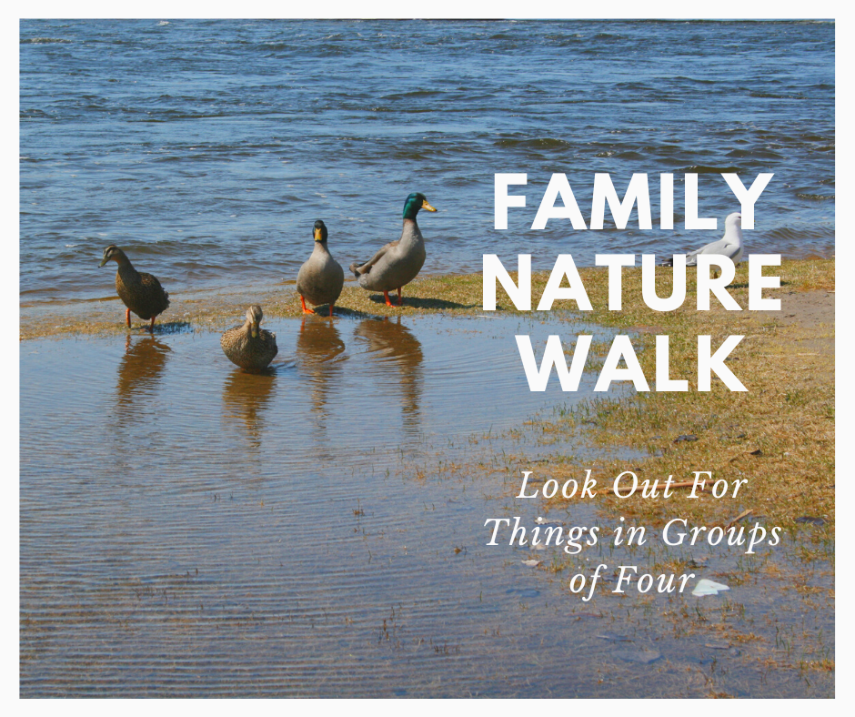 Family Nature Walk_ Four.png