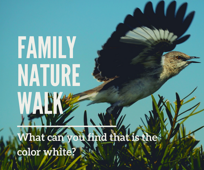 Family Nature Walk_ White.png