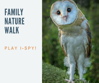 Family Nature Walk_ ispy.png