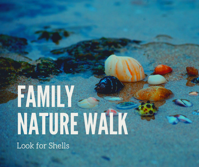 Family Nature Walk_ Shells.png