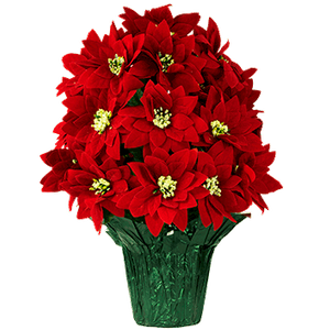 Circular PT1431-Red-Poinsettias Christmas.png