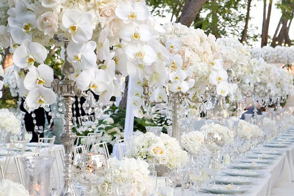 white roses - event planners