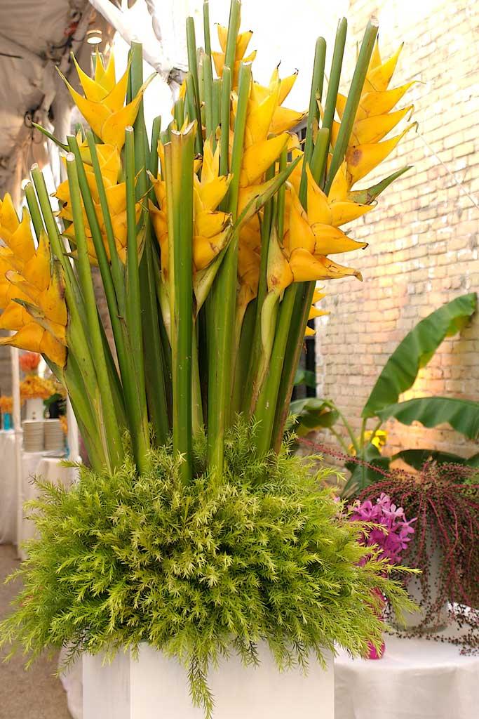 outdoor floral arrangements