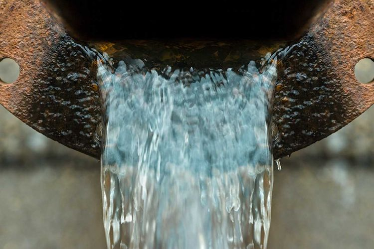wasterwaterColl.jpg