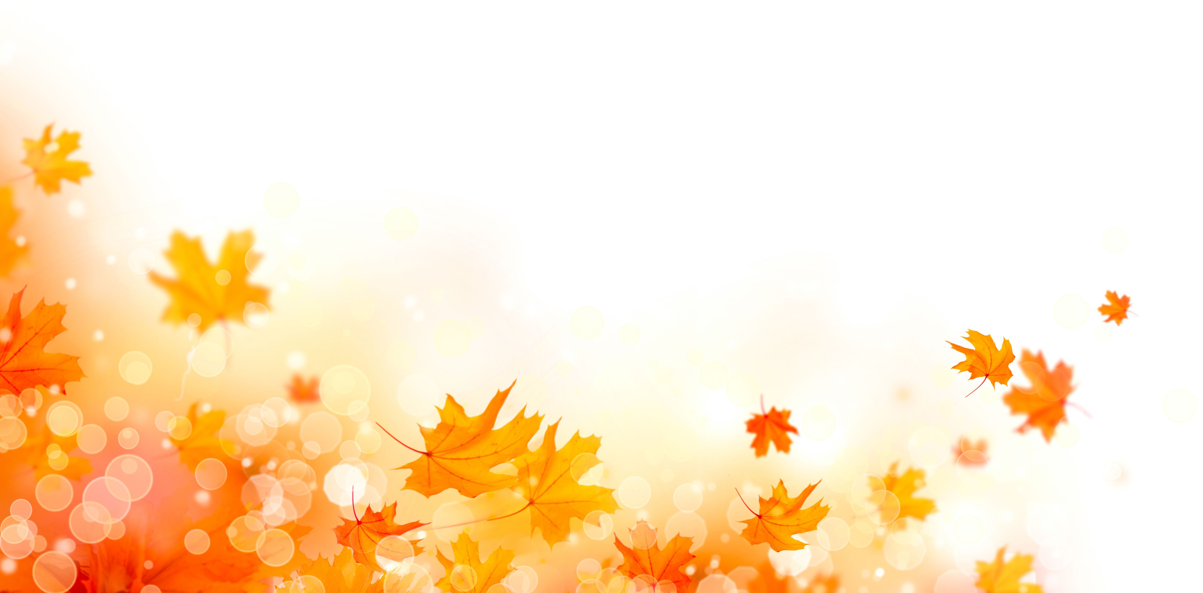 The pharmacy will be closed on Thursday, November 26th in observation of Thanksgiving.