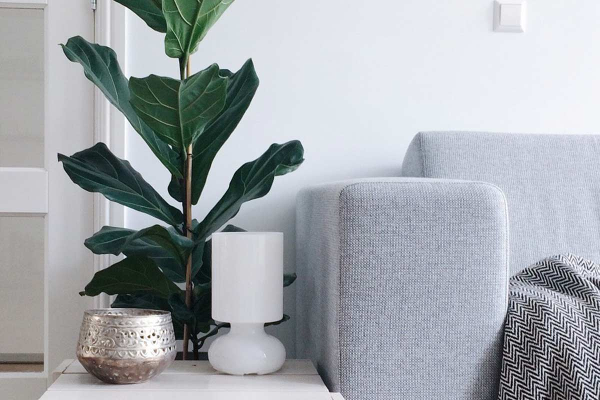 Tips for Small Apartment Décor