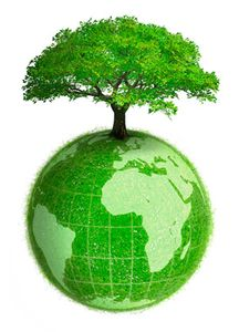 Tree with Green Earth.jpg