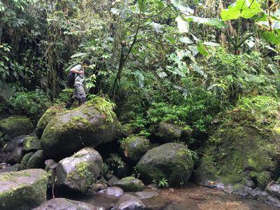 ecotourism guide crossing river rocks