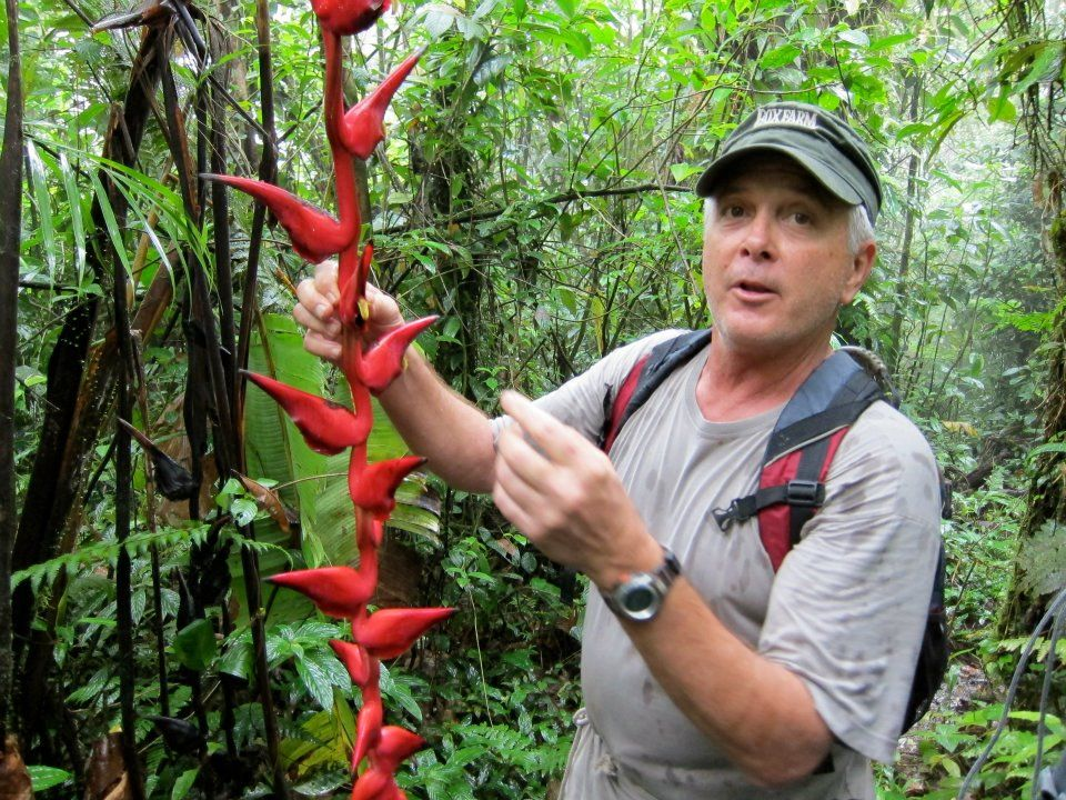 David Vaughan with lobster-claw heliconia