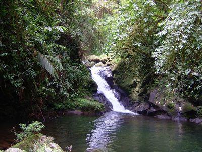 rainforest waterfall into pool at la danta