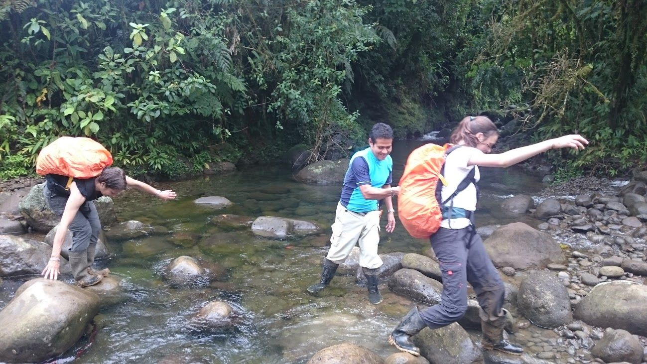 guide helps ecotourists cross rainforest stream