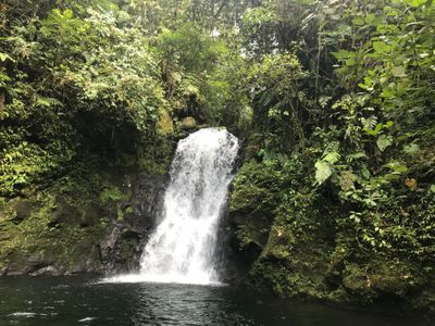 eco-tour guide at top of waterfall