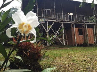 La Danta Salvaje Lodge & One Day Orchid