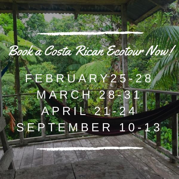 Book a Costa Rican Ecotour Now