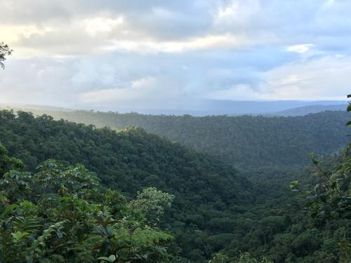 View from the lodge at la danta salvaje costa rica