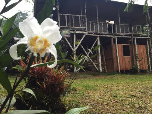 La Danta Salvaje Lodge & One Day Orchid