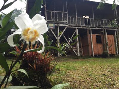 La Danta Salvaje - Lodge & One-day Orchid.jpeg