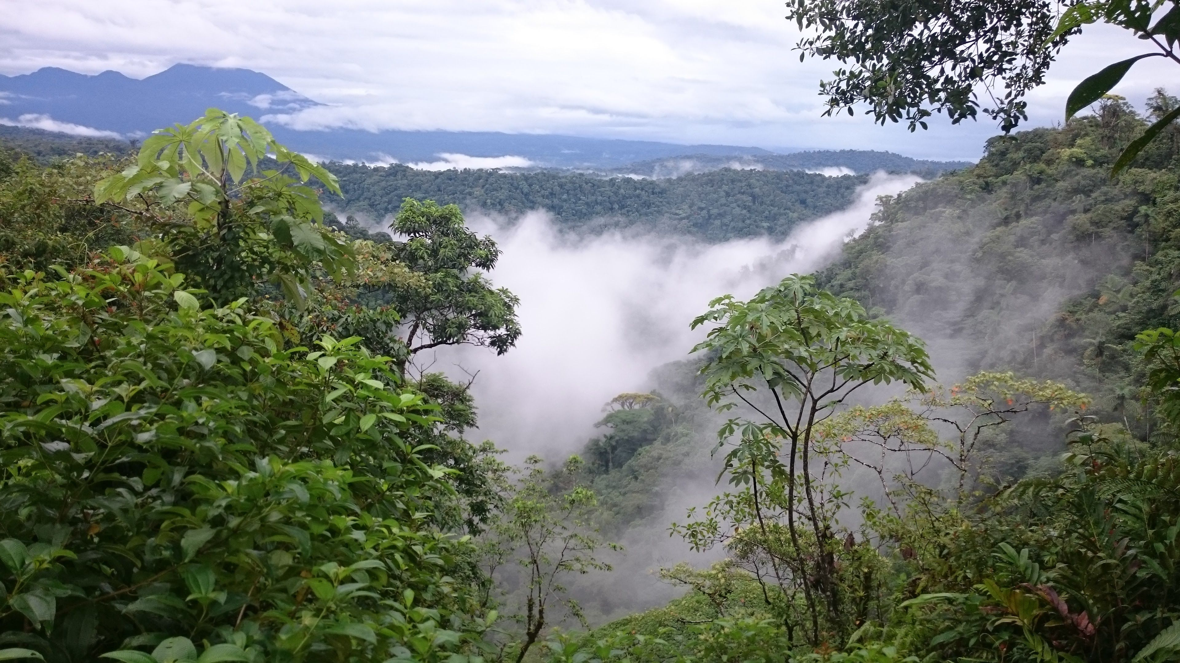 clouds sitting on Costa Rican rainforest mountains