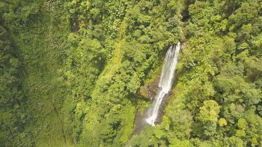 giant costa rican rainforest waterfall