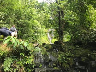 Hiking up the Costa Rican rainforest rocks