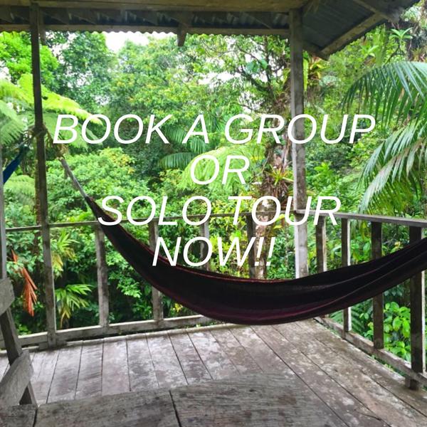 Book a Costa Rican Ecotour