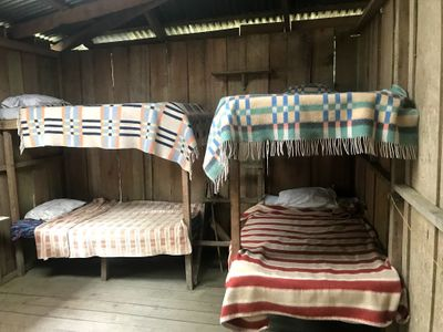 ecolodge twin bunk beds
